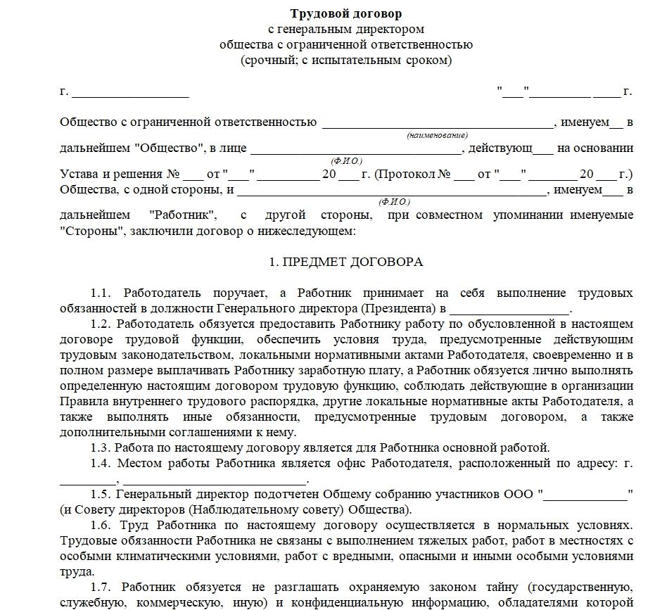 трудовой договор с директором